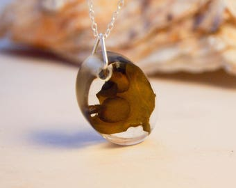 Real Seaweed Pendant - Small Oval seaweed - Mermaid Jewellery - Mermaid Jewelry