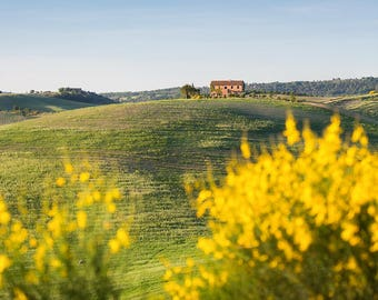 il Rigo, Tuscan Countryside, Tuscany, Italy, Farmhouse, Rustic, Belvedere, Val d'Orcia, Agriturismo - Travel Photography, Print, Wall Art