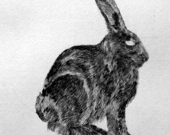 "Handmade drypoint etching ""Hare/rabbit"""