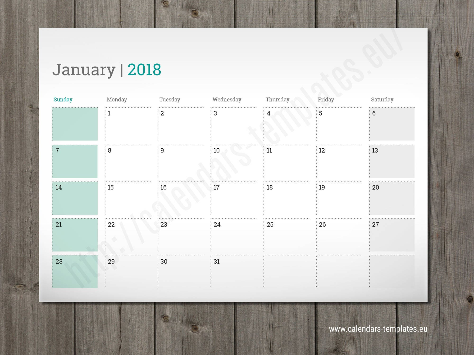 Printable Daily Planner Template in PDF and