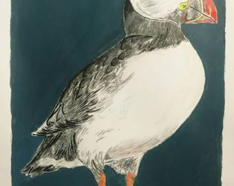 An original print of a Puffin, dry point etching.