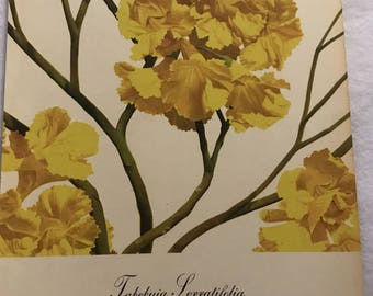 Tabebuia Serratifolia (Yellow Poui) Bernard & Harriet Pertchik 1951 Print from Flowering Trees of the Caribbean Alcoa Steamship