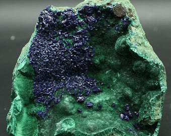 Azurite crystals on Malachite, China - Mineral Specimen for Sale