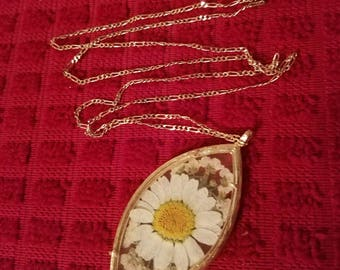 Pressed Flower Daisies Glass Locket