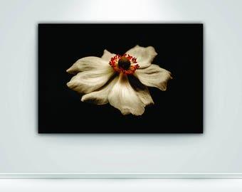 Digital Download Floral Print Flower Print Floral Photography Nature Botanical Fine Art Photography Wall Art Wall Print Decor Printable Art