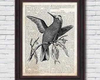 Bird Dictionary Print, Vintage Bird Print, Bird Antique Decor, Dictionary Print - DI035