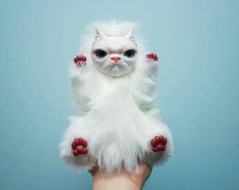 Gloomy mr.Cat
