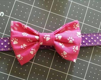 Pink dog paw