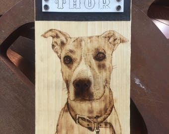 Dog Woodburning from a picture