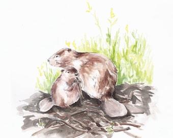 Beavers, 9x12 giclée watercolor art print