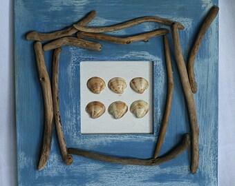Cadre coquillages et bois flottés d'esprit bord de mer