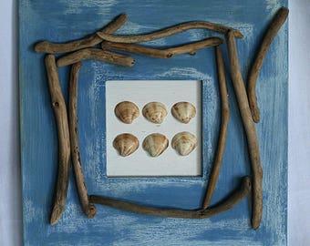 Frame shells and Driftwood sea spirit