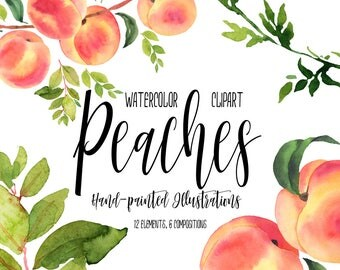 Peaches watercolor clipart, Peaches illustration, Watercolor fruit, Still life, Fruits Clipart, Peaches branch, Kitchen decor, Digital, PNG