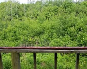 Pine Walking Stick