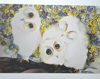 3 Snowy Owlets