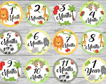 Cute Jungle Animals Safari Baby Monthly Milestone Clothing Stickers