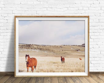 "digital photography wall art, instant download printable art, large wall art, large art, landscape photography, horse art - ""Pasture Trio"""