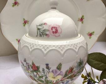 Delightful Wild Tudor Vintage Aynsley Jar, Cookie Jar, Biscuit Jar