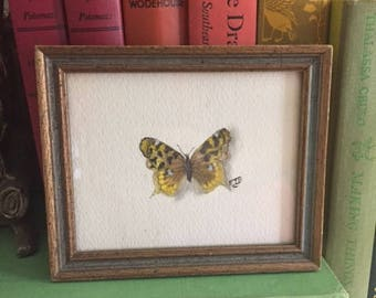 Watercolor Butterfly-Vintage & Hand painted