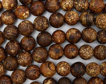 """10mm matte brown Tibetan DZI agate round beads 14"""" strand 38596"""