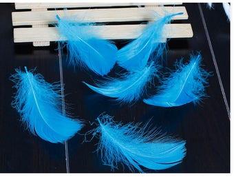 Set of 10 natural goose feathers blue 7 / 8cm x 2 / 3cm.