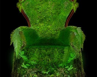 Moss Covered Chair and Oak Background