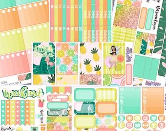 Aloha- Happy Planner Full Sticker Kit w/ BONUS DECO