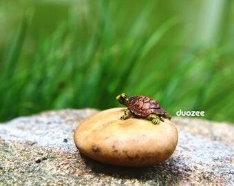 Miniature Enchanted Fairy Garden House Turtle Figurine, One Turtle on Rock