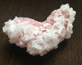 Large Pink Halite Natural Mineral Specimen Crystal Cluster