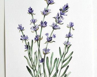 Lavender painting  Original watercolor  Flowers watercolor  Purple Flowers  Lavender watercolor Botanical illustration