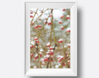 Printable Nature Photo, Botanical Wall Art Print, Red Berry, Home Decor, Nature Photography, Floral, Plant, Tree Art, Beige Wall Art, Pastel