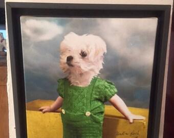 small dog canvas print