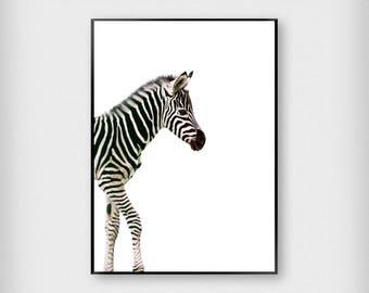 Zebra Print | Kids | Black - White | Cute - Children - Poster