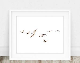 Flying Bird Print - Flying Birds Print, Flock of Birds Print, Flock of Birds, Flying Bird Art, Minimalistic Print, Contemporary Bird
