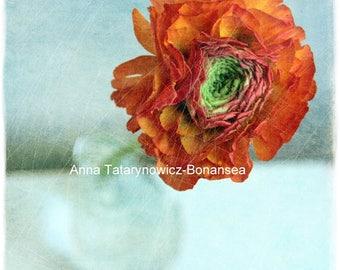 Art color photo ' Fleur' 15 cm x 15cm