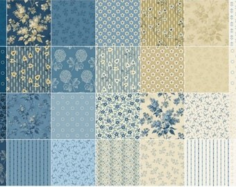 """Blue Sky Double Scoops/Jelly Roll by Edyta Sitar of Laundry Basket Quilts for Andover Fabric - 40, 2.5"""" of Precut Fabric Strips"""