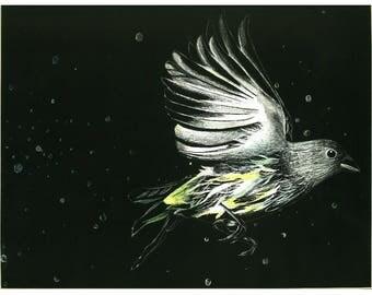 Flight, Wall Art, Fine Art Print of Original Drawing, Scratch Art, Etching, Watercolor/Marker