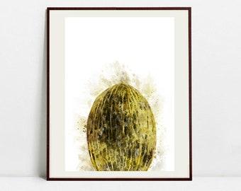 Melon Watercolor Art Print, Melon Illustration, Kitchen Wall art, Kitchen Wall Decor, Fruit Print
