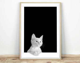 Curious Cat - Printable Art, Cat Photo, Kitten Print, Cat Wall Art, Printable Nursery, Fine art Print, Instant Download, Cat Print, Animal