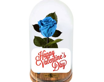 Beauty And The Beast Rose, Live Forever Rose in Glass, Live Infinity Rose, Eternity Rose, Valentines Day %100 Natural LFR0005