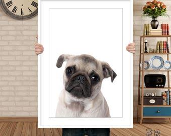 Pug Print, Dog Print, Dog Wall Art, Kids Room Decor, Nursery Decor, Dog Poster, Dog Photo, Nursery Print, Bedroom Print, Dog Decor, Dog Art