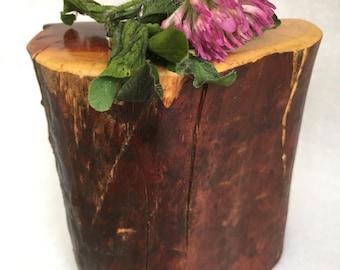 Manzanita wood refrigerator flower vase magnet