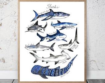 Watercolor Sharks Print Nautical Decor Ocean Print Kids Room Decor NUrsery Boys Room Shark Poster Shark Wall Decor Shark Decor Great White