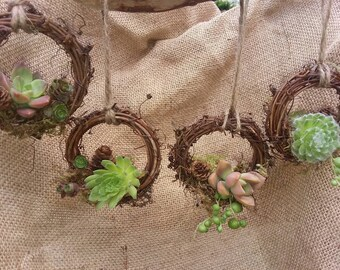 Rustic live succulent wreath