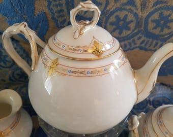 Tea/Moccaset / Limoges A. Lanternier Hand Painted Porcelain