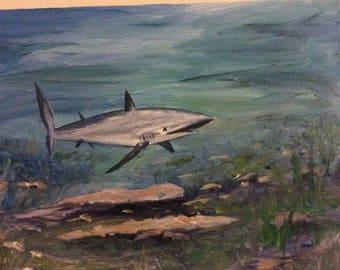 Shark in the Deep Blue