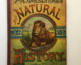 Pictures and Stories from Natural History 1886