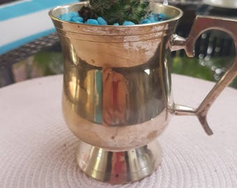 Silver goblet with cactus