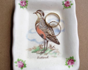 Vintage Ring Dish Axe Vale Pottery Decorated With Male Dotterel Trinket Dish