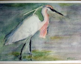 watercolor an egret, bird